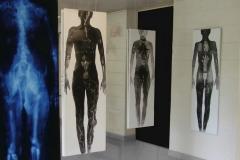 Exposition 2014 Montgeron Essonne